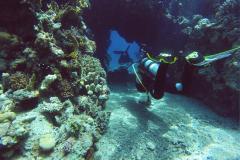 дайвинг в черном море фото 1