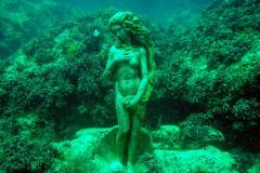 дайвинг в черном море фото 3