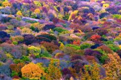 крым осенью фото 2
