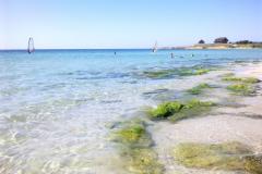белый пляж в оленевка фото 3