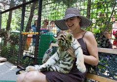 зоопарки сказка ялта фото 12