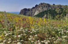 Крым в июне: цены, экскурсии, туры, активный отдых!