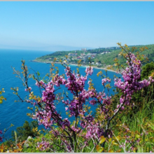 Крым весной: куда поехать? Что посмотреть? Где остановиться?