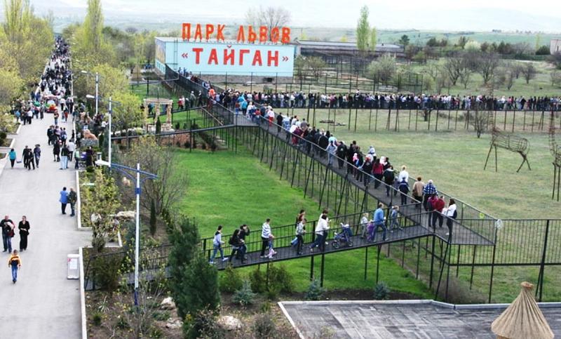Парк львов Тайган Белогорск