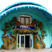 Морская фауна евпаторийского аквариума «Акула» ждет вас в гости!