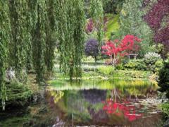 Дендропарк в Евпатории — оазис среди каменных джунглей