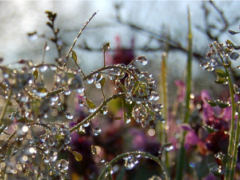 Чем заняться в дождливый день в Крыму? — Советы от портала