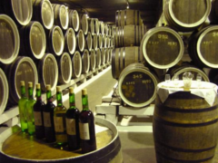 Завод марочных вин «Инкерман»: путь от лозы до бокала