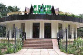 Что лечат в санатории «Саки» в Крыму? Специализация здравницы и ее лечебная база