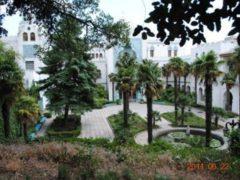 Санаторий Ясная поляна в Гаспре, г. Ялта: цены, размещение, пляж