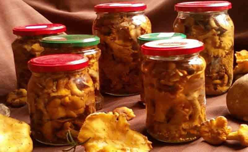Маринованные грибы лисички