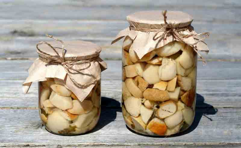 Маринованные белые грибы