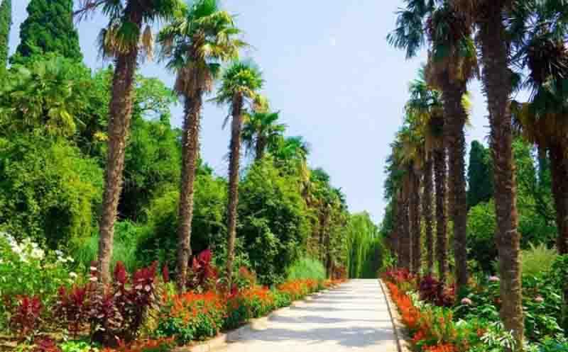 Никитский ботанический сад на карте Крыма