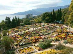 Никитский ботанический сад (Ялта, Крым)