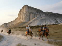 Конные прогулки и туры в Крыму: цены 2019, отзывы
