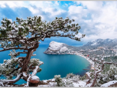 Отдых в Крыму в декабре 2021. Стоит ли ехать? Что посмотреть? Где отдохнуть?