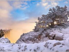 Какой он, Крым в феврале? Как разнообразить свой отдых зимой?