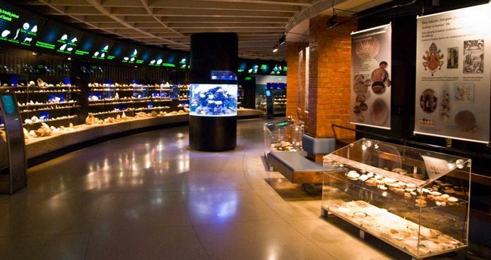 Cевастопольский морской аквариум-музей