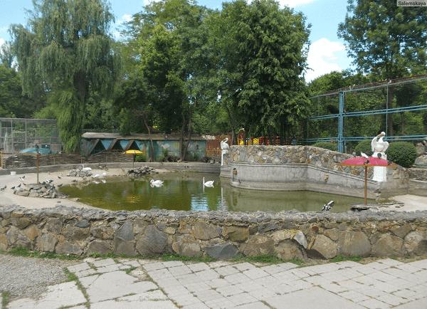 Симферопольский зоопарк фото 5