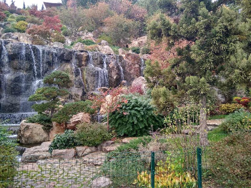 В японском саду фото