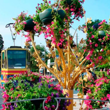 Топ 8 мест Крыма, где можно встретить 8 марта с любимой