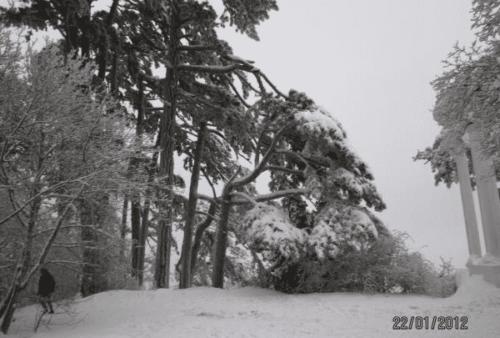 Ангарский перевал фото 4