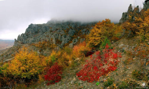 Крым в ноябре фото 3