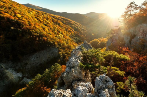 Осень в Крымских горах фото 4