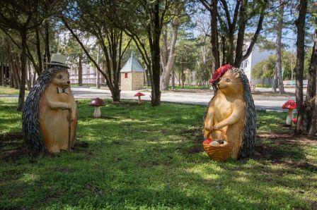 Санаторий Дружба парк фото 3