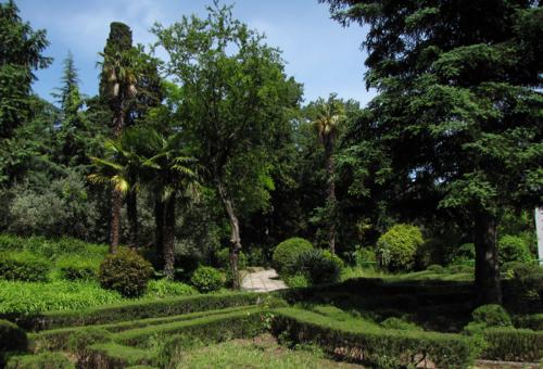 Дворец Дюльбер парк с деревьями