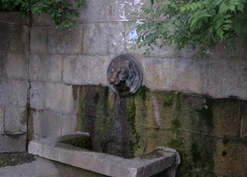 Дворец Паниной  фото парка 4