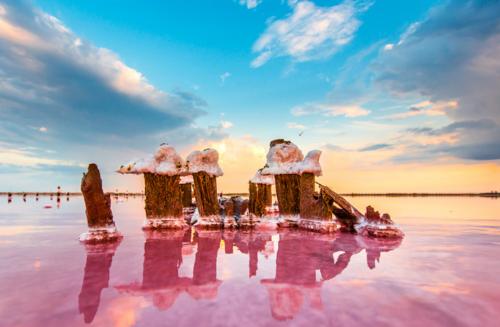 Розовое озеро в Крыму фото 3