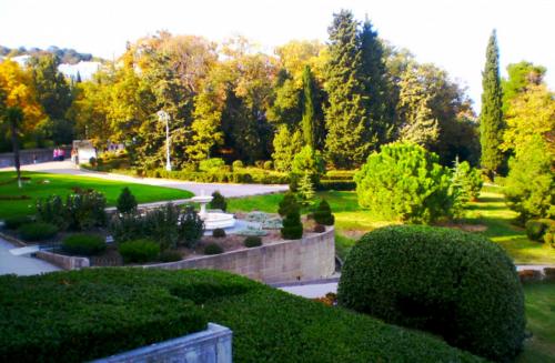 Сад фото 5