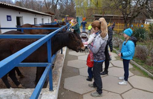 Симферопольский зоопарк фото 2