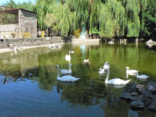 Симферопольский зоопарк фото 3