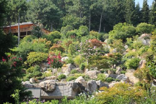 Японский сад в Крыму фото 6